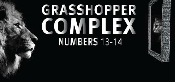 grasshopper-complex