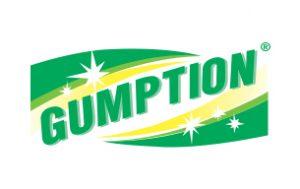 gumption-300x189