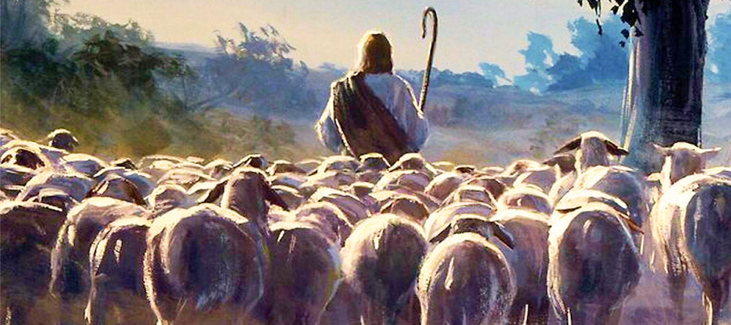 sheepfollowJesus