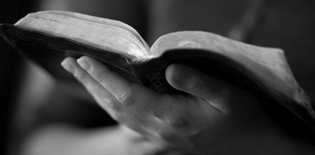 BIBLE-CROP